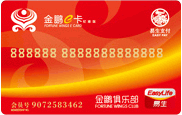 Airlines & accessories/Jinpeng E-card