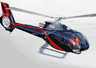 Helicopter manufacting/ Mercedes Benz/Car components/Aircraft leasing/Pilot training.