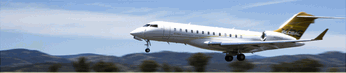Business charter/Airplane management/ Airplane purchase consultation.